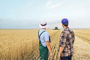 Monde agricole : sociétés spécifiques et bail rural - La lettre des notaires de France - Mai 2021